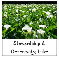 9-2-2018 Stewardship and Luke