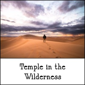 1-20-2019 temple n the wilderness